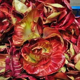 Il radicchio rosso: una forza della natura che aiuta a stare bene
